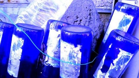写真・六本の青い瓶.jpg