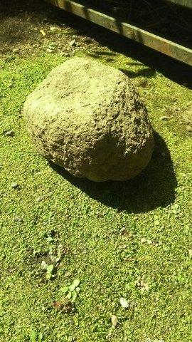 丸味のある石.JPG