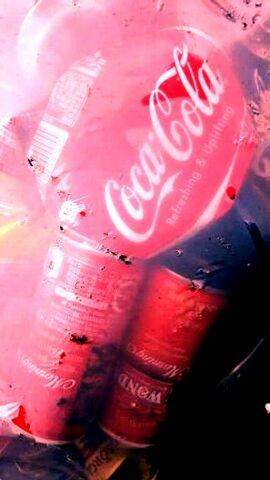 写真・ゴミ袋の中のコカコーラの瓶.jpg
