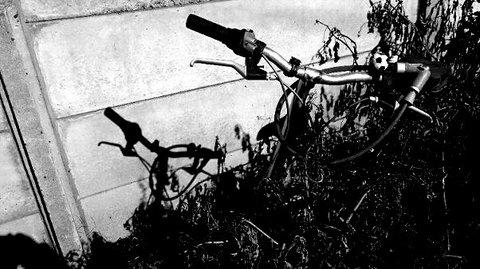写真・捨てられた自転車.JPG