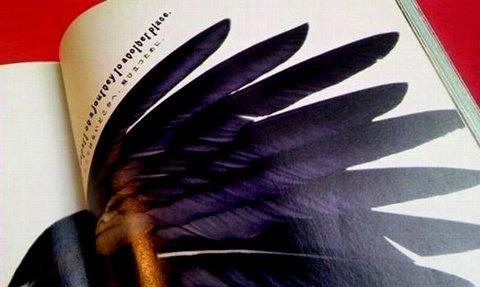 写真・翼の本.jpg