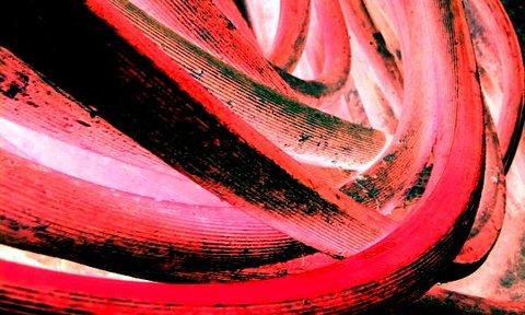 写真・赤いホース.jpg